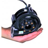EWP80 - In Hand (A).JPG